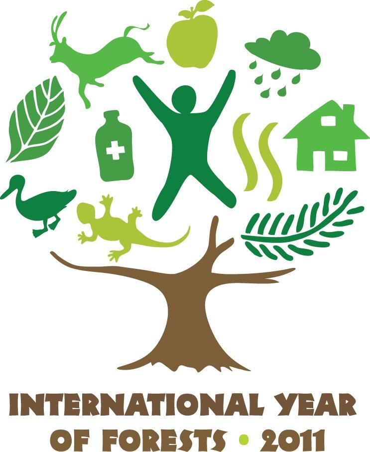 Международный год лесов